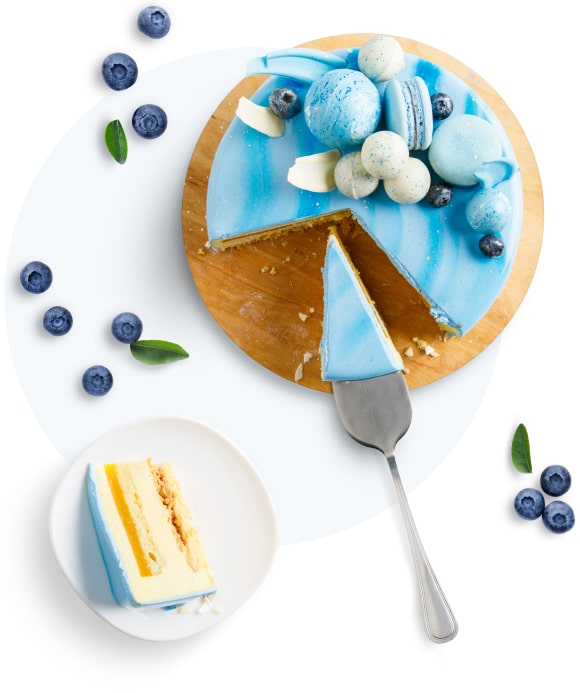 bakery-cyan-cake-opt